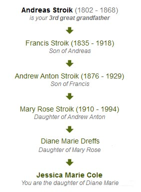 Lineage for the Stroik Surname